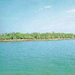 Sundarbans National Park (1987)
